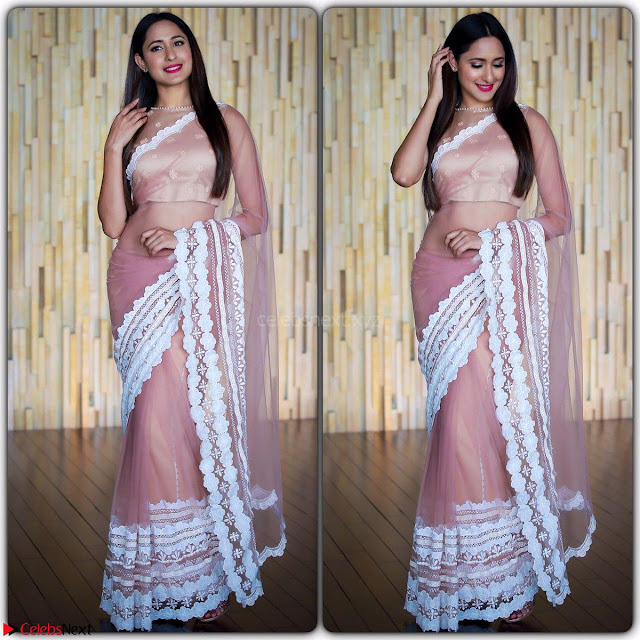 Pragya Jaiswal in lovely Transparent Lace Border Work Saree 3.jpg