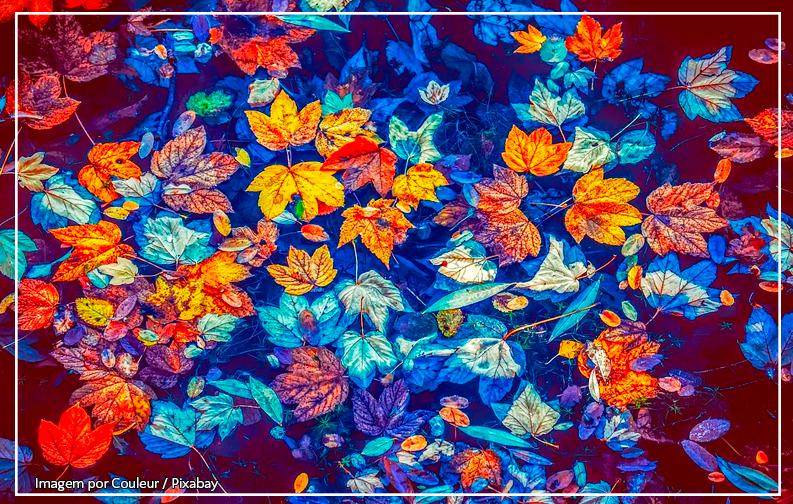 A imagem mostra várias folhas de outono, coloridas, boando em cima de um lago. As cores predominantes são azul, laranja e amarelo, e a imagem parece uma pintura