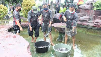 Kodim 0410/KBL Panen Sayuran Hidroponik dan Ikan Lele