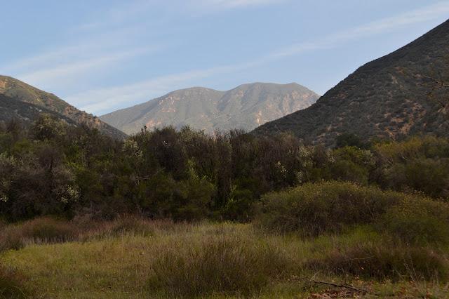 Redrock Mountain