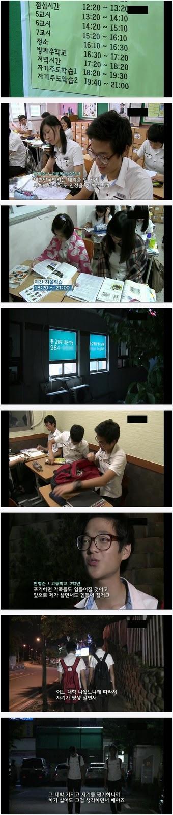 덴마크 학생, 한국의 학생