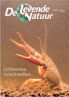 Cover to Living Nature, volume 122, issue 4.