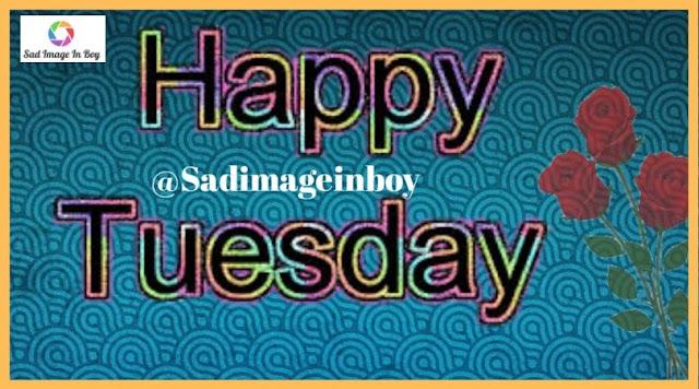 Happy Tuesday images   happy tuesday meme, happy tuesday morning images, have a great tuesday images