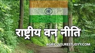 इसके अंतर्गत अनेक उपायों के माध्यम से वनों एवं सकल भौतिक पर्यावरण के सरंक्षण के लिए विशेष प्रयास किये जा रहे हैं ।