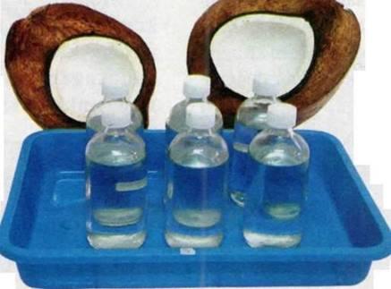 Virgin Coconut Oil Terbaik