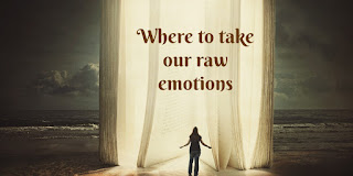 https://biblelovenotes.blogspot.com/2017/05/taking-our-emotions-to-lord-in-psalms.html