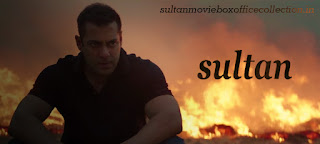 Sultan Movie  Advance Tickets Online Booking at paytm