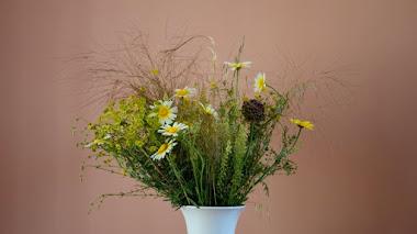 Flores que deja mayo en el jardín, en el camino y en el jarrón