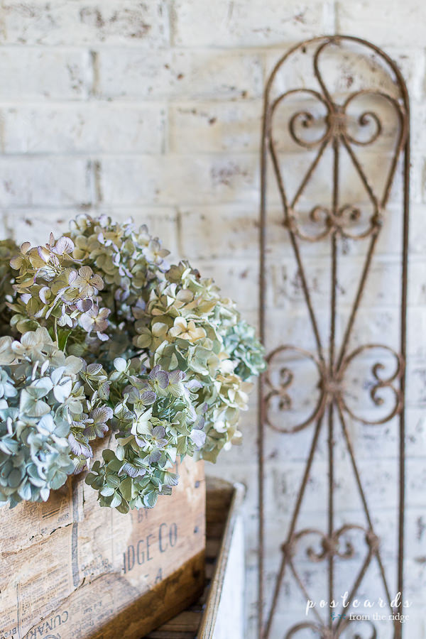 dried hydrangeas in a vintage wood box