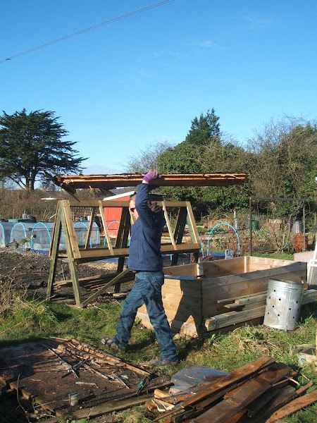 carrying away our storm damaged allotment shed, some pieces will be recycled on our plot