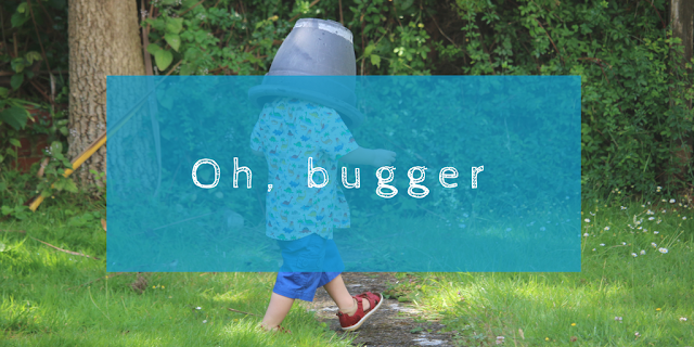 It has happened; we have our first swear word. What do you do when your two year old swears?