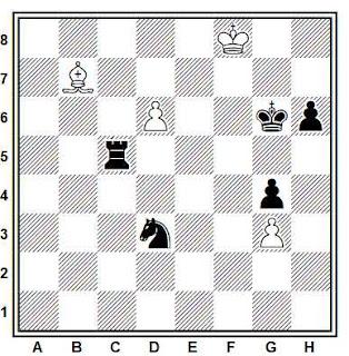 Estudio artístico de ajedrez compuesto por V. y M. Platov (La Strategie, 1908)