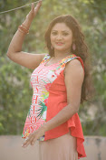 Vasavi Reddy glamorous photo shoot gallery-thumbnail-13