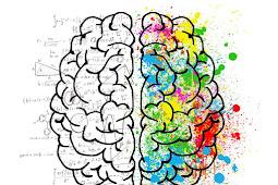 Makanan Terbaik untuk Meningkatkan Daya Ingat Otak