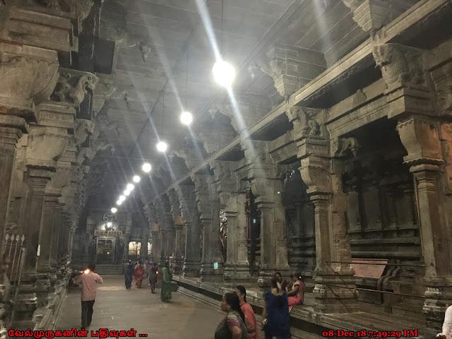 Padaleeswarar Temple Thirupathiripuliyur