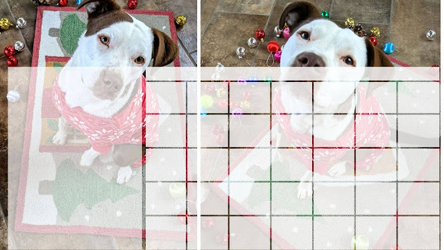 Free Christmas Calendar with Santa Paws