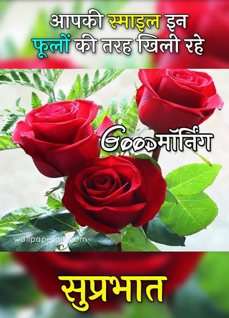 good morning gulab ka photo download