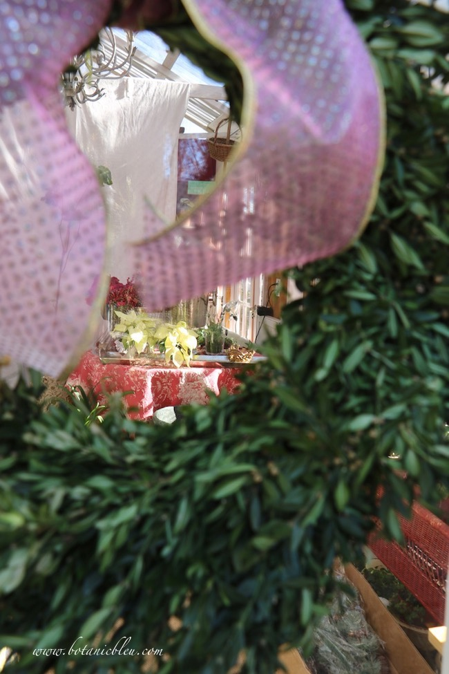 Peek through a boxwood wreath on the glass door to catch a glimpse at French Country Christmas style inside the greenhouse