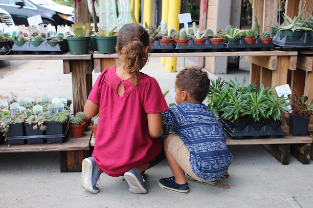 Kids at a farmer's market looking at succulents.
