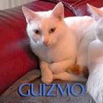 http://animaux76.blogspot.fr/search?q=GUIZMO