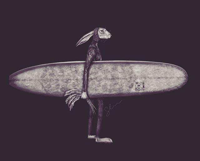 Sammy Little: ilustración, animales y surf