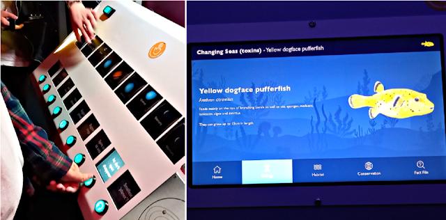 Interactive displays in The Deep