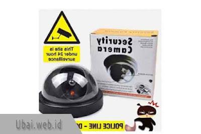 Fake Camera CCTV Security