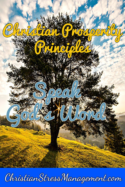 Christian Prosperity Principles: Speak God's Word