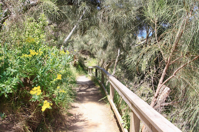 narrow sandy track along hillside