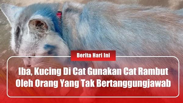 Iba! Kucing Di Cat Gunakan Cat Rambut Oleh Orang Tak Bertanggungjawab