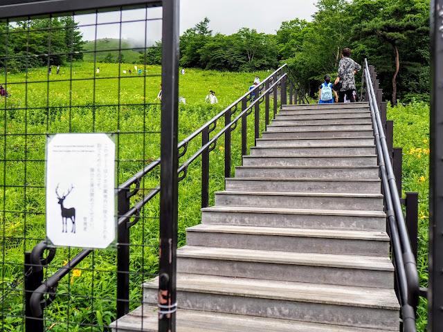 日光霧降高原 キスゲ平園地 階段 天空回廊 鹿侵入防止扉