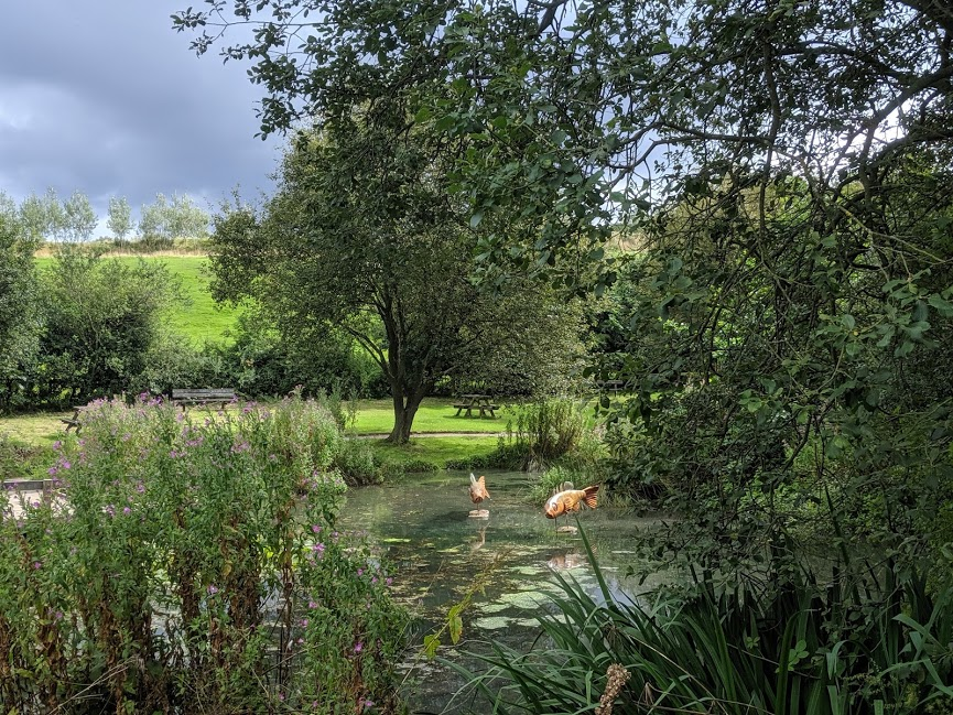 Guisborough Forest Pond