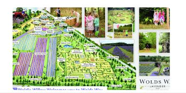 mappa fattoria lavanda