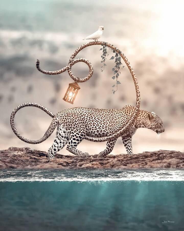 08-The-leopard-the-parrot-Art-Jose-Francese-www-designstack-co