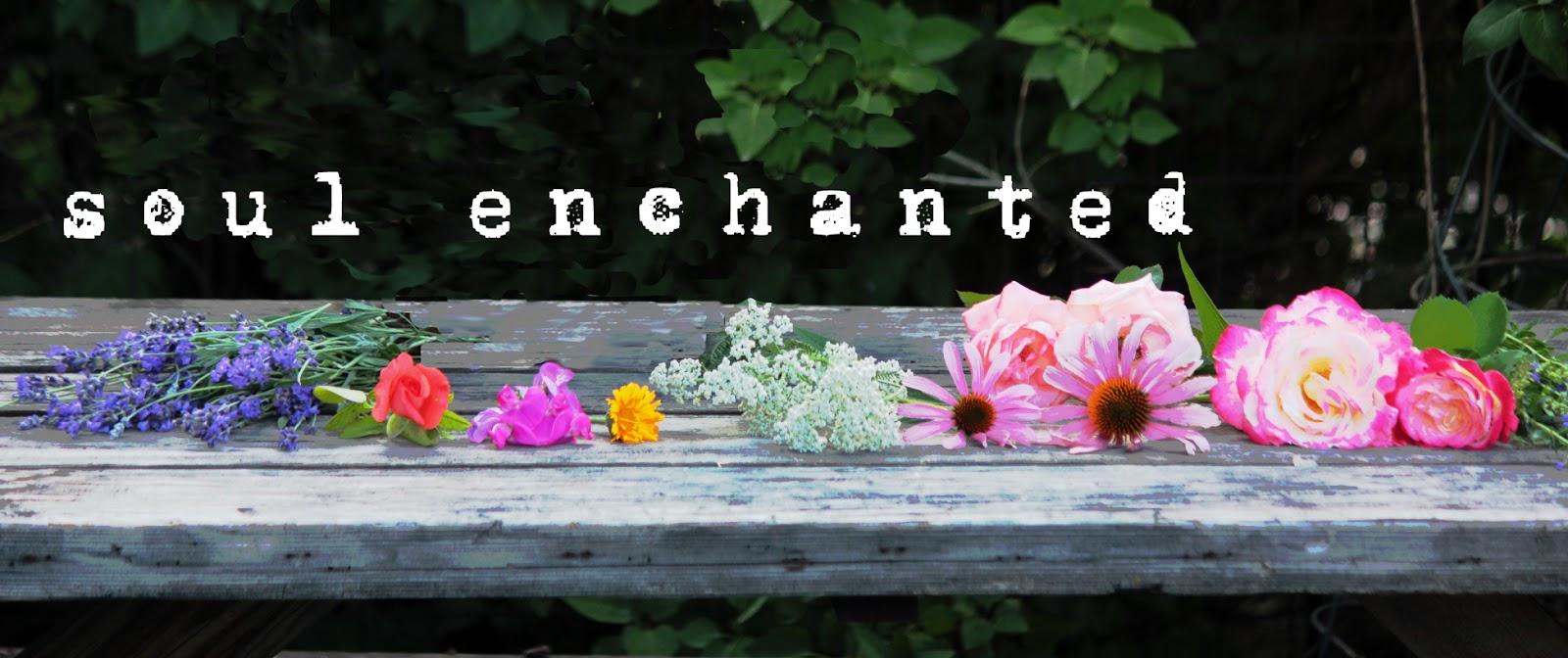 soul enchanted