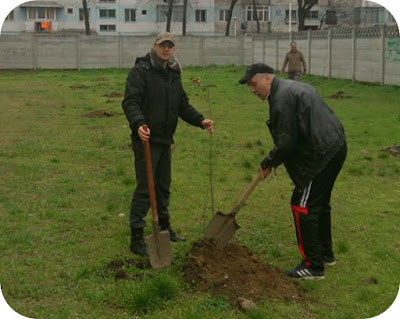 Andrei cu copacelul blogosferic