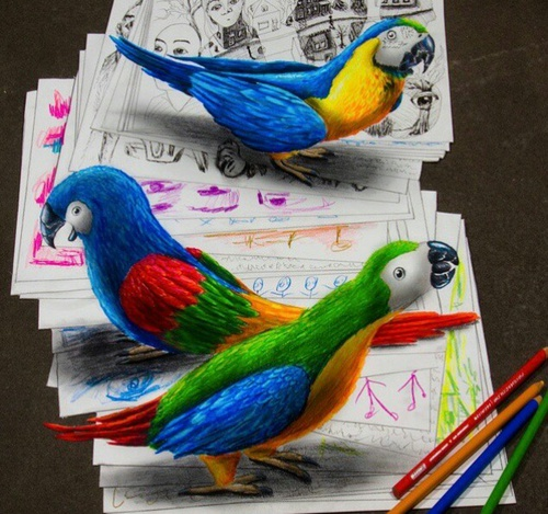 optical-illusion-parrot-3D-on-papers