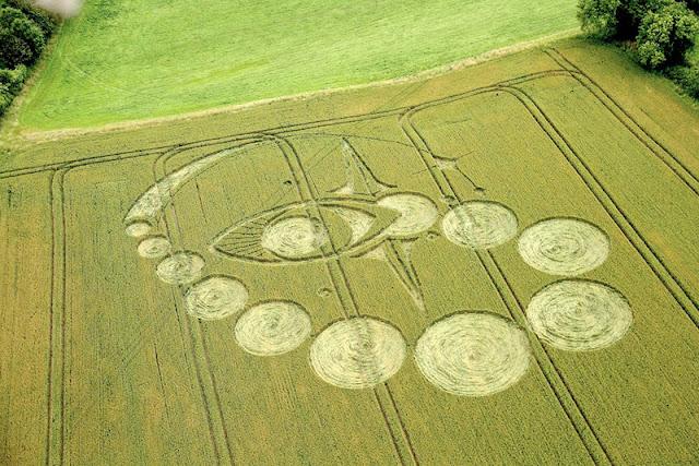 """Những suy đoán cho nguồn gốc """"vòng tròn kỳ lạ"""" trên cánh đồng nước Anh"""