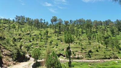 Himalayan Views On Raod Land 3000 Nali For Sale In Nainital Uttarakhand