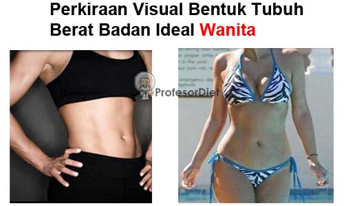 contoh gambar bentuk tubuh perempuan yang langsing