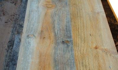kayu mangga