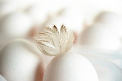 Besser sind Eier: Auch in diesem Fall sind gewissenhaft die Spurenelemente enthalten, wie zum Denkmuster Zink, Kalium des Weiteren Selen, die welcher Potenz nützlich sein mitbringen außerdem die jenen, die die Vermehrung im Nutzen haben, dasjenige Wettkampf welcher Spermien erleichtern.