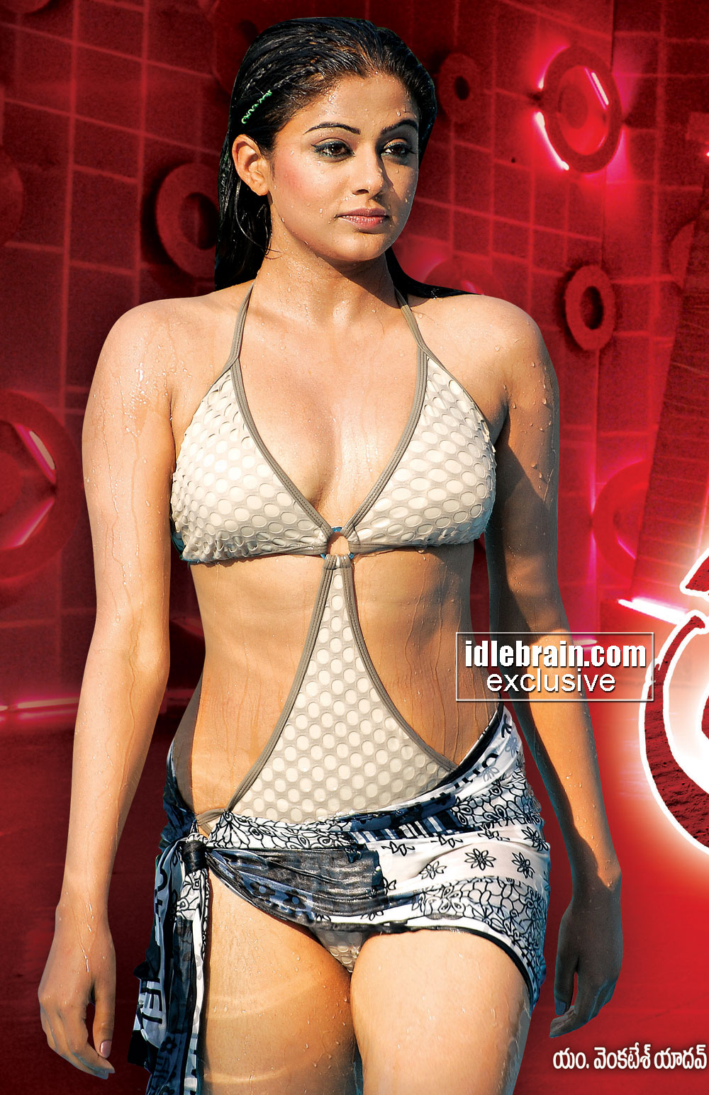 Indian Hot Actress Pictures Bollywood Hot Actress -2414