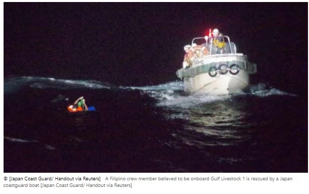 The ship's 42 crewmembers, thousands of cattle are feared' to be lost from Japan