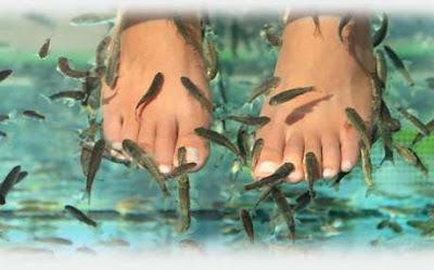 SPA: Esfoliação de Peixe