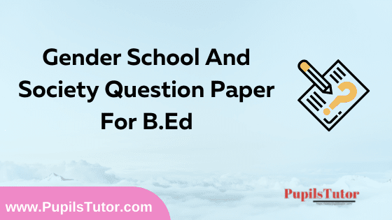 Gender School And Society Question Paper For B.Ed 1st And 2nd Year And All The 4 Semesters In English, Hindi And Marathi Medium Free Download PDF   Gender School And Society Question Paper In English   Gender School And Society Question Paper In Hindi   Gender School And Society Question Paper In Marathi
