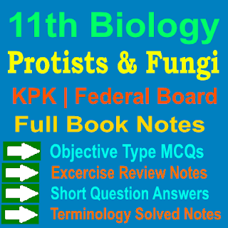 1st Year Protists and Fungi Notes Biology KPK And Federal Board Notes