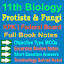 11 Class Biology Notes   Protists and Fungi
