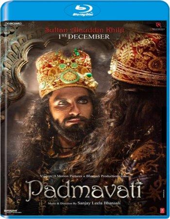Padmaavat (2018) Hindi ORG 480p BluRay