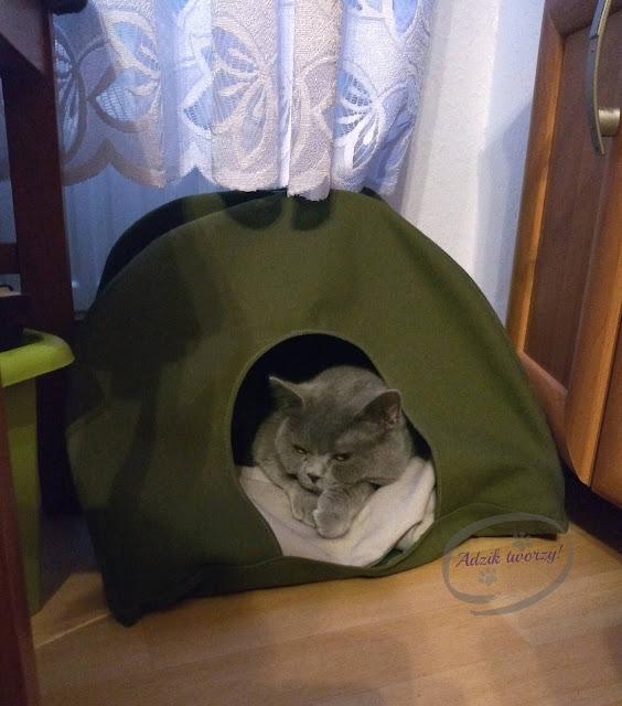Adzik tworzy - diy namiot dla kota